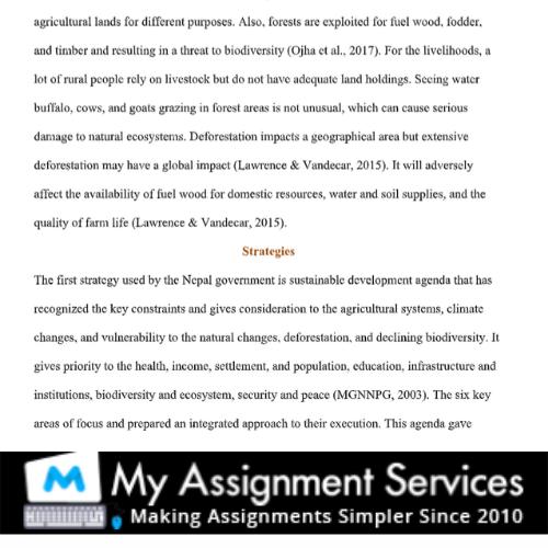 body - homework essay help