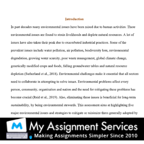 introduction - homework essay help