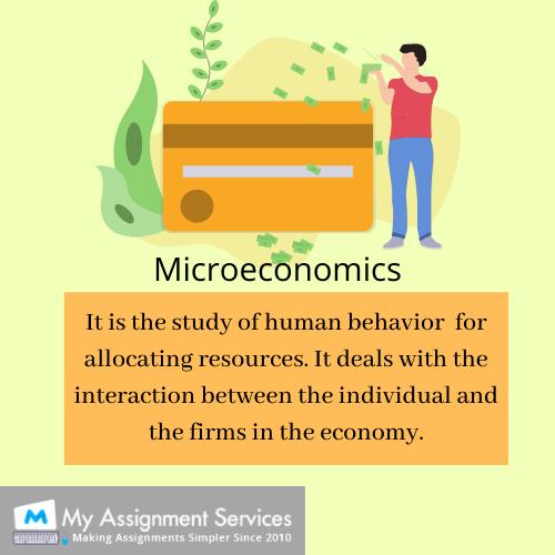 microeconomics assignment help online